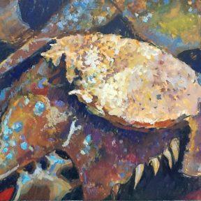 horseshoe-crab-gouache-1blanchard