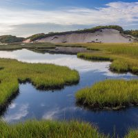 3-long point marsh - provincetown